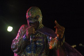 Blowfly at the East